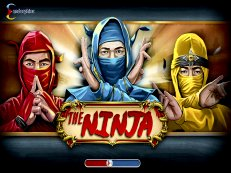 the ninja slot endorphina